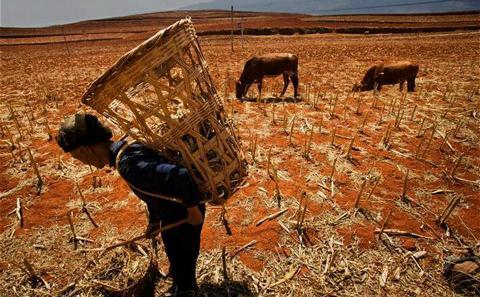 """民间组织建议将气候变化适应纳入""""十三五""""规划"""