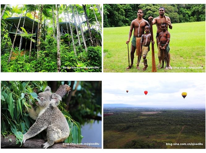 【澳大利亚】凯恩斯热带雨林,奇妙世界