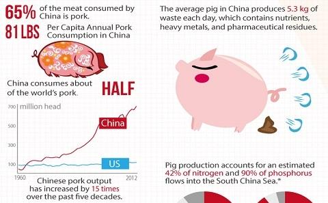 数据图:中国猪肉生产碳足迹
