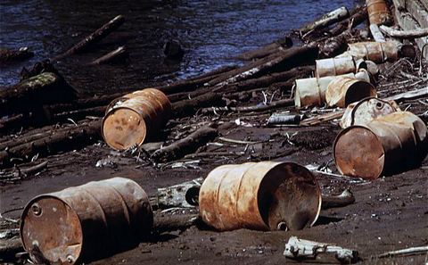 《汤姆斯河》作者访谈:环境问题大到无法视而不见