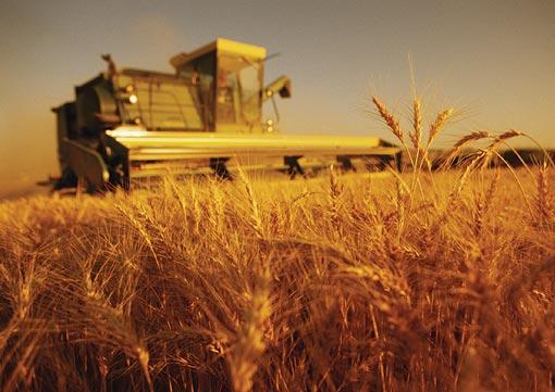 关于有机农业