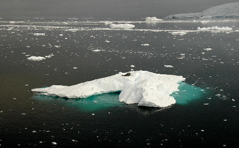 媒体评论:消逝的南极冰川
