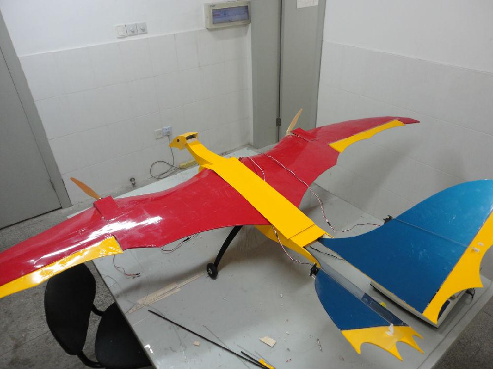翼龙在天,今年我指导的本科毕业设计