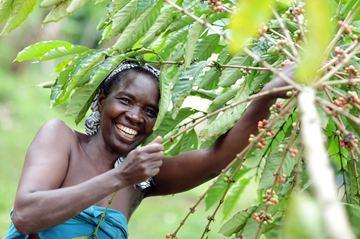 【旁观日记】非洲食品在中国越来越好卖