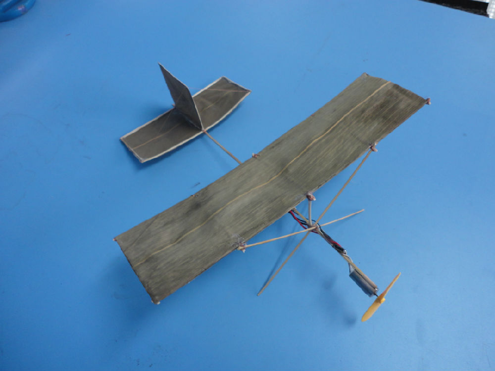 纯竹质环保型微型飞机(图)
