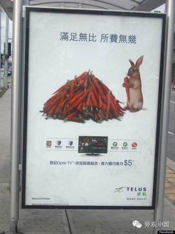 【洋吐槽】加拿大中文广告牌遭非议