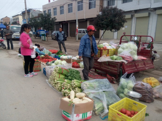 与陕西苹果农民一席谈