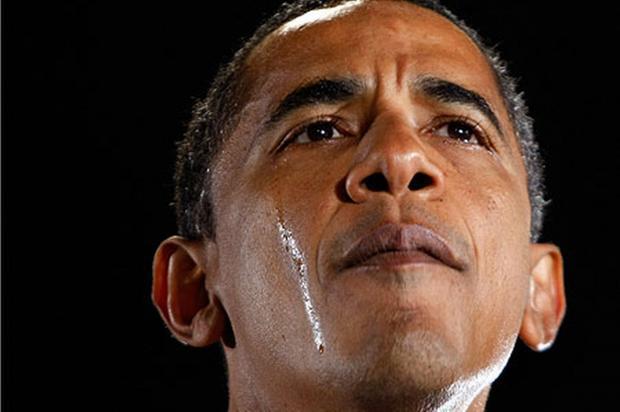 中期选举:白宫不相信眼泪