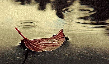 《大投行家》第三章《潜雨时节》