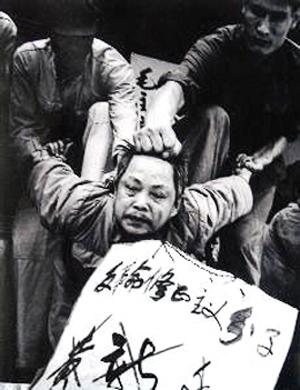 [转载]毛时代国人罪名录