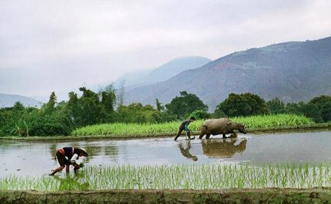 中国农业适应气候变化的能力不足