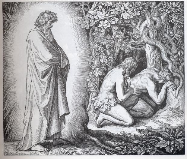 圣经故事插画集之三