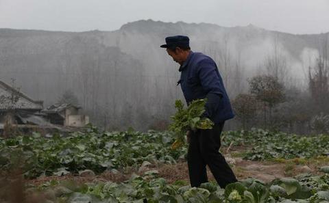 中国的土壤及水污染将抬高全球粮食价格