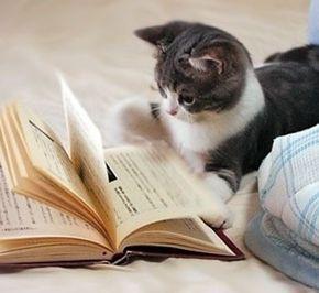 """""""拿起来读吧""""——写在2015年读书节前夕"""