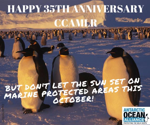 CCAMLR 35岁生日快乐!!!