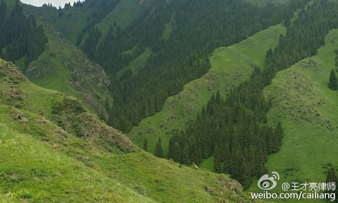 明月出天山,未来之新疆。