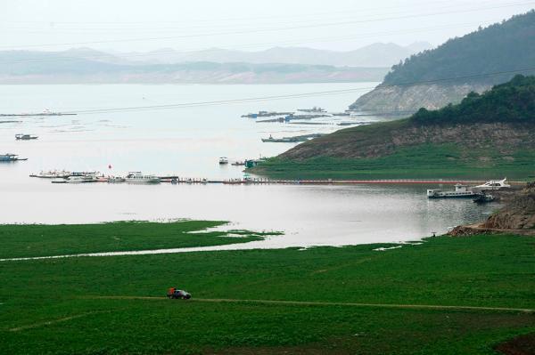 研究称南水北调水源地铅含量曾超标数倍,官方:入渠水质正常