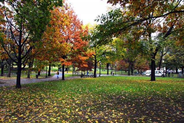 波士顿的回忆(2):自由之路