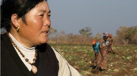 中国提供给非洲的贷款可能引发另一场债务危机