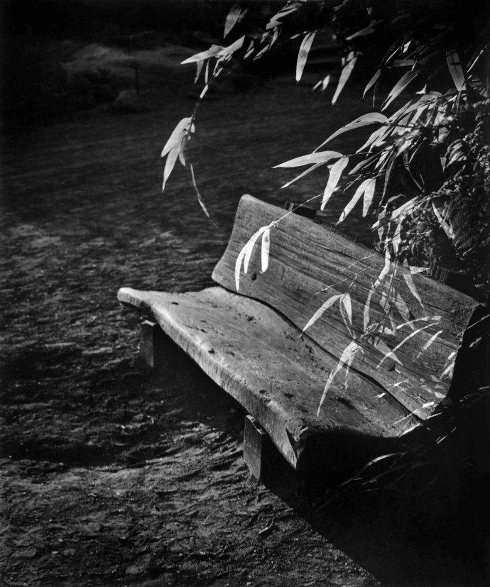 张五常摄影作品连载(第10期):沙龙的日子(之十)