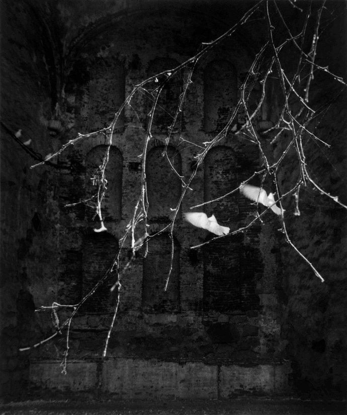 张五常摄影作品连载(第11期):沙龙的日子(之十一)