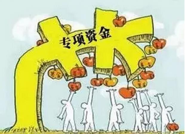中国政府经济治理的项目体制研究(一)