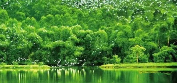 [原创]生态文明三重奏