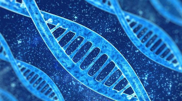 倘若基因可被编辑