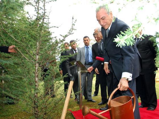 巴西环保法案要退步?