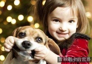 有些孩子感知善意的能力不如宠物小狗狗