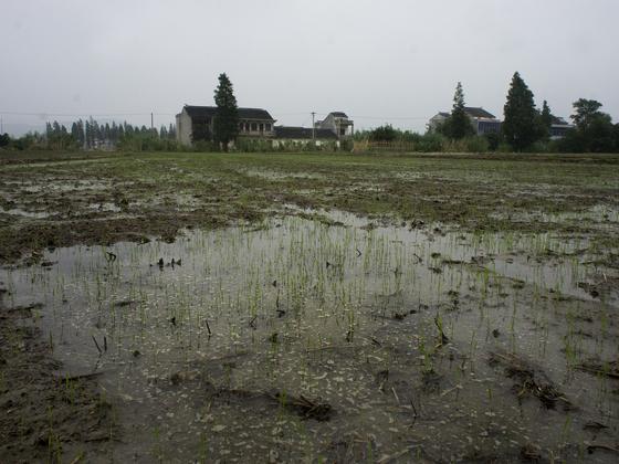 宣战土壤污染
