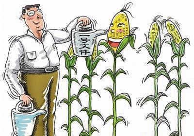 """[原创]农民的权利自由,才是解决""""三农""""问题的根本"""