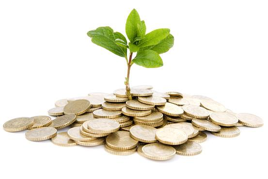 绿色债券有多绿色?