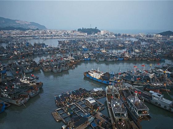 """求解中国远洋渔业的""""输血依赖症"""""""