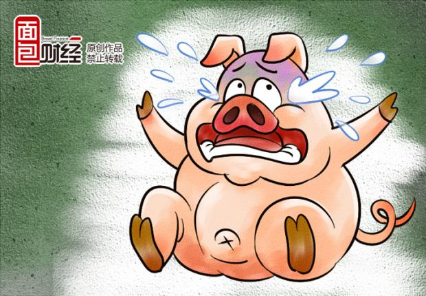 猪肉价格暴跌:进口猪来袭 美国肉价只有中国一半?