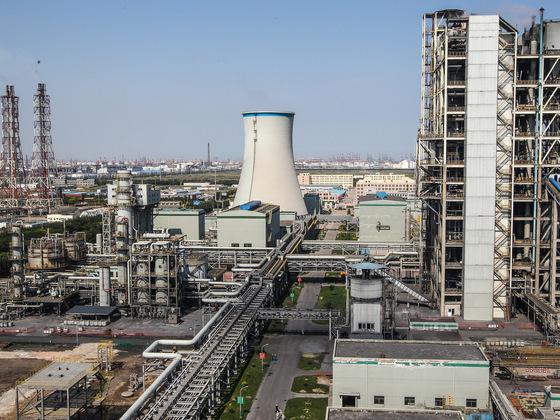 圆桌讨论: 中国企业走出去应该执行什么环保标准?