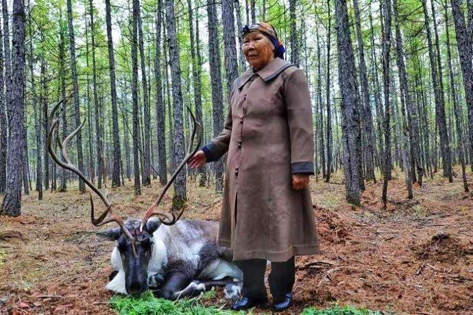 【寰行中国】山林中的鄂温克人