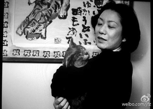 一个人的房间,只有猫作伴