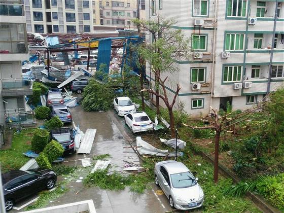 台风又来了,要不要买份保险?