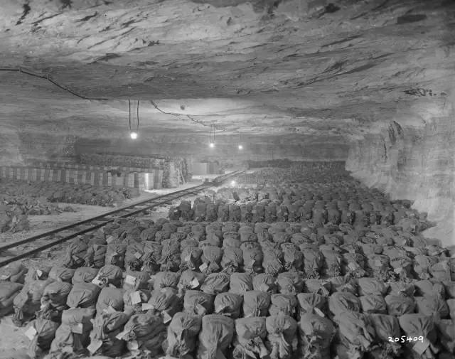 存放在莫克斯盐矿的纳粹黄金