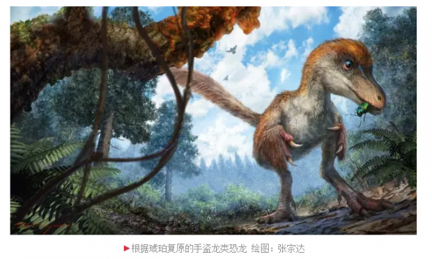 琥珀中发现恐龙尾巴,能复制一头出来吗?