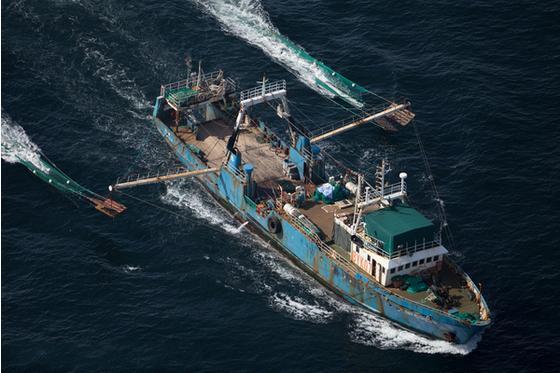 中国需控制远洋捕捞渔船增长