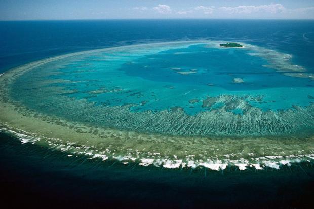 澳大利亚:大堡礁保护进展堪忧