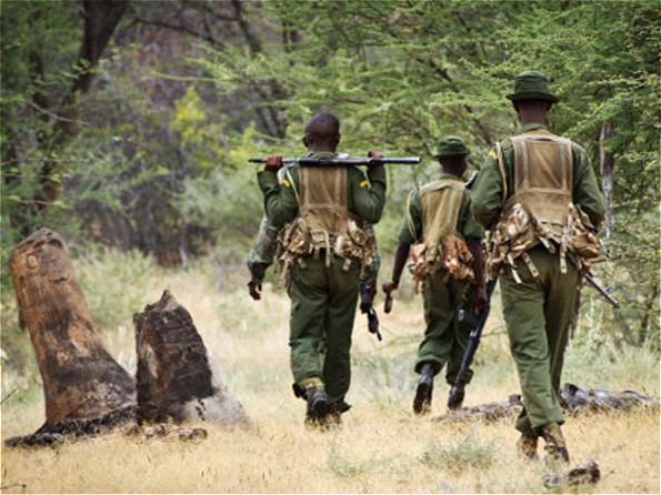 野生动物巡护员频繁丧生亟需社会关注