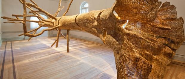 自然之都:约翰·格雷德令人眼花缭乱的可降解艺术品展