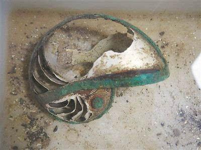"""从邳州新发现的西晋文物谈""""海上丝路""""的传说与史实:鹦鹉螺 黄金分割和数学"""
