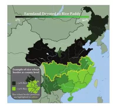 南与北的差异 | 来自水稻和小麦的解释