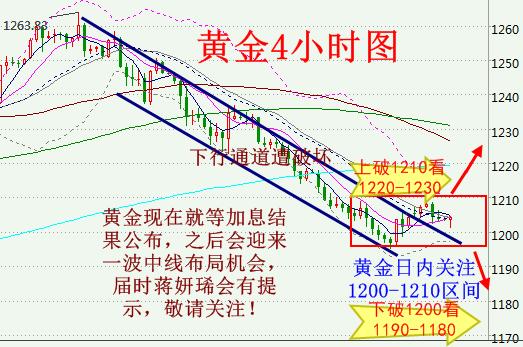 黄金1200-1210震荡等加息 原油近期或将见底