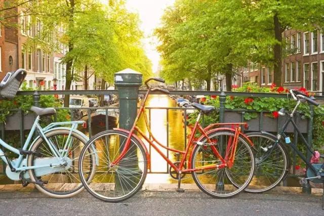 共享单车或有助于提高国民素质