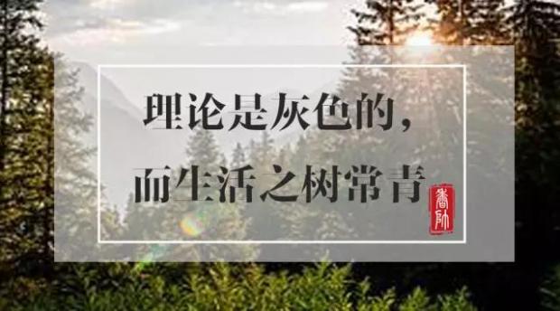 柳斌杰:理论是灰色的,而生活之树常青